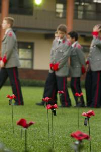 The memorial: 100 current students planted poppies in memory of the 98 boys and 2 staff who died in World War I.
